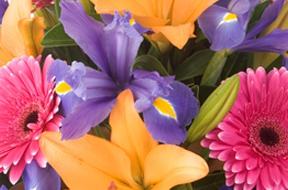 Flowers By Rosita